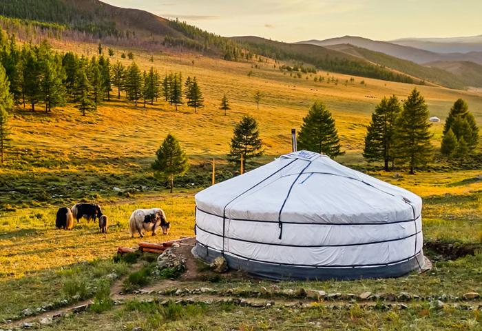 veduta yurta